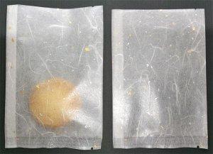 画像4: ガス袋 雲龍和紙合掌袋 ゴールド 115x170mm